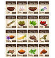 hot spices for seasonings and condiments poster vector image vector image