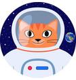 icon orange cat astronaut in space suit vector image