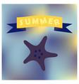 sea shells and sea star vector image vector image