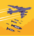bomber and sale bombing vector image