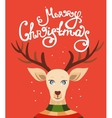 Christmas greeting card with reindeer vector image vector image