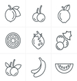 Line Icons Style Fruit Icons Set Design vector image vector image