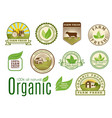 organic vegan logo labels healthy food eco vector image