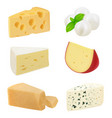 realistic cheese pieces delicious gourmet food vector image vector image