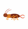 crawling earwig insect animal cartoon character vector image vector image