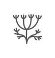 dill fresh line icon vector image vector image