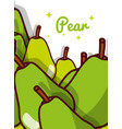 pear fruit juicy sweet poster vector image vector image