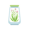 pink flowers with green leaves inside glass vector image