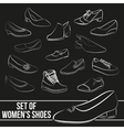 Set in the of women s shoes painted lines vector image vector image