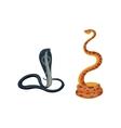 Snake reptile cartoon set vector image