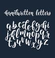 white handwritten latin calligraphy brush script vector image vector image
