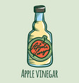 apple vinegar icon hand drawn style vector image