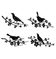Birds on branches silhouettes vector image