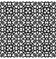 black and white seamless lace texture vector image