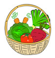 fresh vegetables lie in the basket vector image