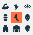 physique icons set with face eye belly and other vector image