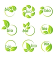 Set of green leaves bio symbol design elements vector image vector image