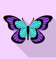 aqua purple butterfly icon flat style vector image