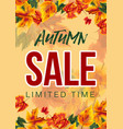 bright design of autumn sale poster vector image vector image