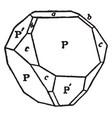 crystal of chalcopyrite vintage vector image vector image