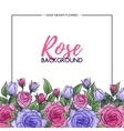 Flower rose background vector image vector image
