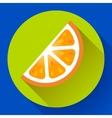 Fruit orange icon flat style vector image vector image