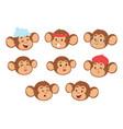 monkeys rare animal cartoon macaque head vector image vector image