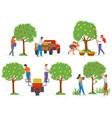 picking apples gardener in orchard fruit vector image vector image