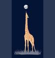 coloured giraffe vector image