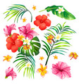 a realistic style branch of vector image vector image