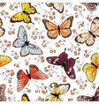 butterfly seamless pattern butterflies and vector image