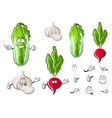 Chinese cabbage garlic and radish vegetables vector image vector image