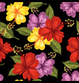hibiscus and tropical leaf seamless pattern vector image