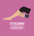 Lady Stocking Clothes Accessories vector image
