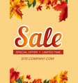 stylish poster with sale promotion vector image vector image