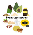 unsaturated fat nutrient rich food vector image vector image