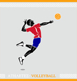 Athlete Volleyball player vector image