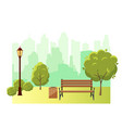 beautiful summer city park with green trees bench vector image