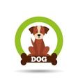 cute pet design vector image