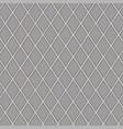 gray rhombus vector image vector image