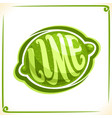 logo for green lime vector image