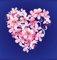 pink flowers heart on dark blue background vector image