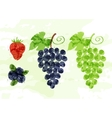 set colorful fresh fruit stains vector image vector image