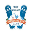 snowboard club concept for vector image vector image
