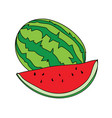 watermelon symbol mascot best for print vector image