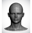 a gray female head vector image