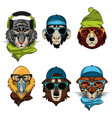 cool wild animals print for t shirt vector image