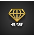 Golden Diamond Logo Design on Gray Background vector image