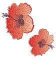 hibiscus flower design vector image