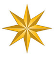 isolated star shape vector image vector image